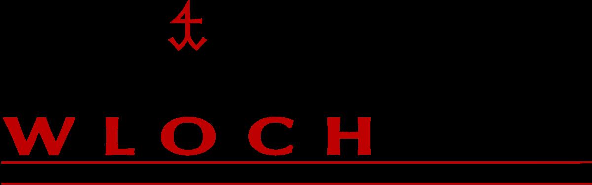 Logo-steinmetz-wloch